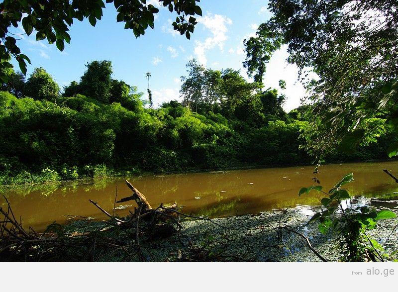 Amazonas09