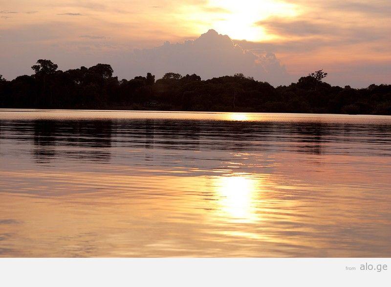 Amazonas23