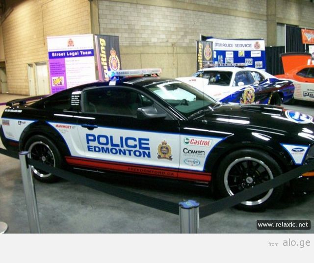 police-car_00076